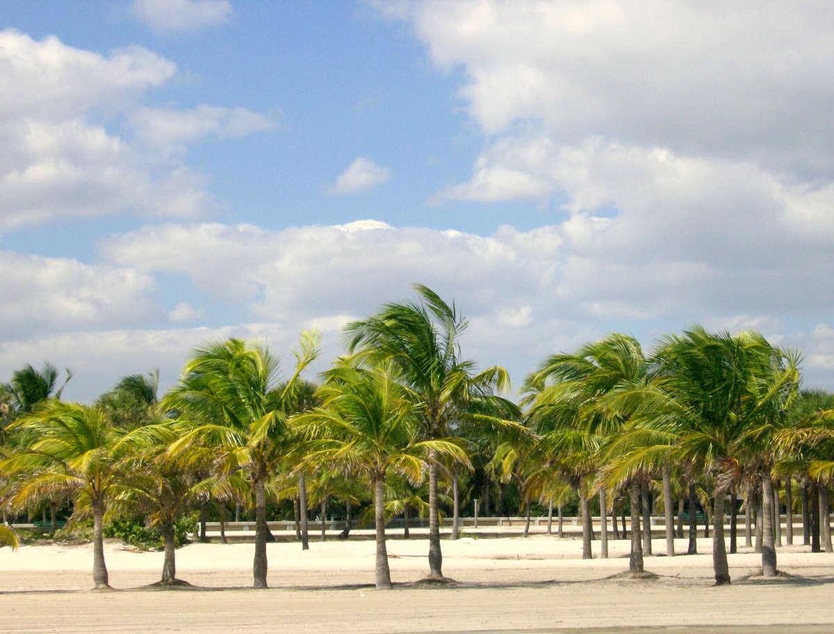 Les plages de Floride à visiter dès cet… hiver!